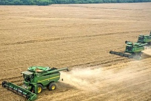 The US forecasts grain harvest at level of 60 million tons in Ukraine